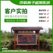 去公园吸氧,看看负氧离子在线监测仪!